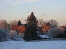 Bild Januar 2009